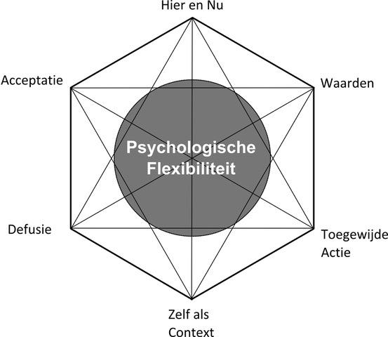 Psychologische flexibiliteit